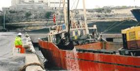 Deniz Dibi Tarama