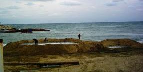 Balıkçı Barınağı Tarama